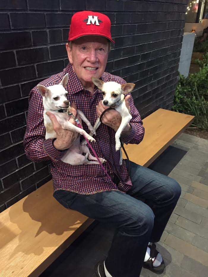 Wink with his Chihuahuas